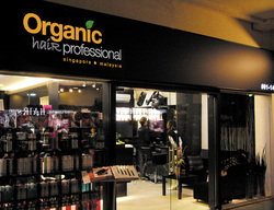 Organic Hair Salon Home